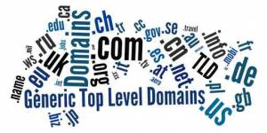 Top-Level Domains E-Vergabe