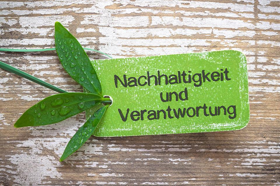 Holzbrett mit Blättern und einem Schild mit der Aufschrift Nachhaltigkeit und Verantwortung darauf