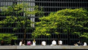 Nachhaltige Beschaffung macht Unis und das Studium lebenswert | Bild: Scott Rodgerson - Unsplash